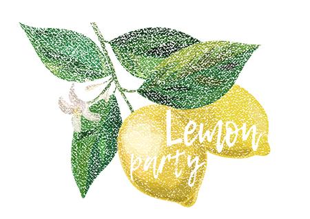 Fresh Lemon with leaves. Lemon Party Text. Vector Illustration.