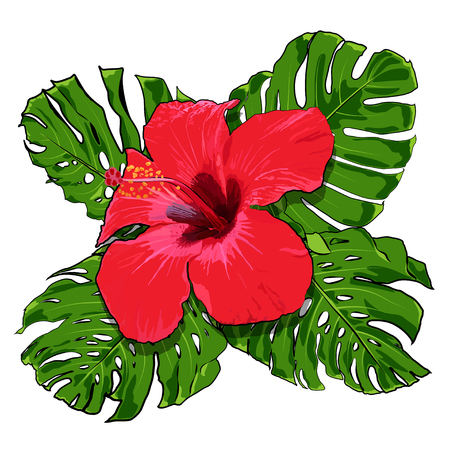 Beautiful tropical flowers bouquet on a white background. Tropical vector design.