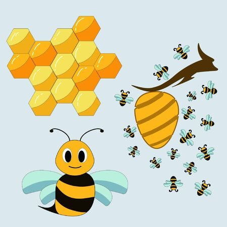 Vector set of bee's life Illustration