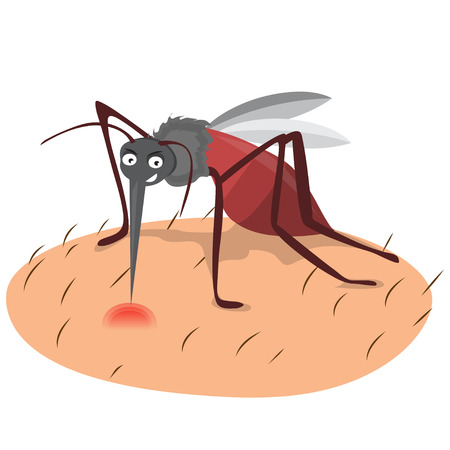 cartoon funny mosquito illustration on a white background.