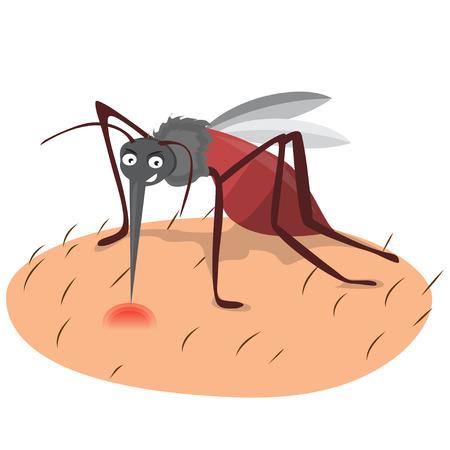 biting: cartoon funny mosquito illustration on a white background. Illustration