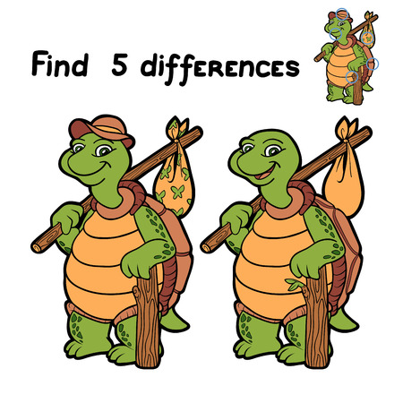 Find 5 differences (turtle) Illustration