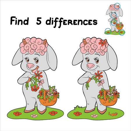 Find 5 differences (rabbit) Vector