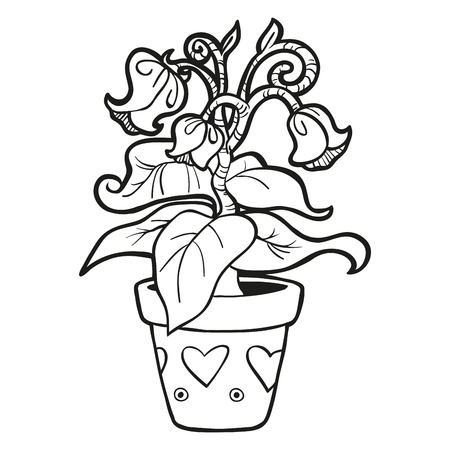 Coloring Book Flowers Vector