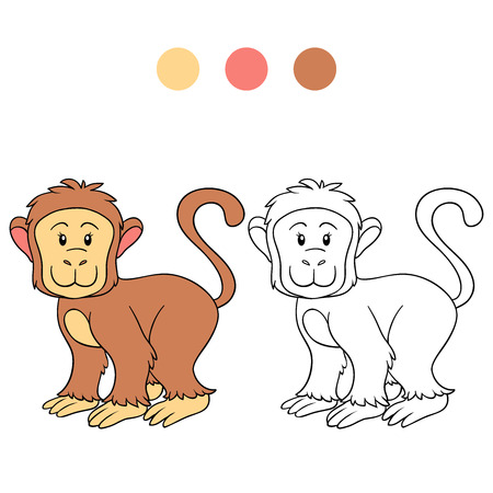 marmoset: Coloring book (monkey)