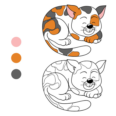 colorless: Coloring book (cat) Illustration