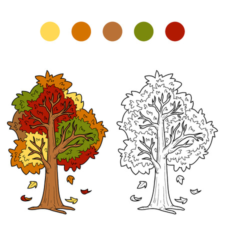 autumn garden: Coloring book (autumn tree) Illustration