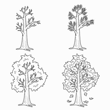 color pages: Coloring book (Four Seasons), vector set of trees Illustration