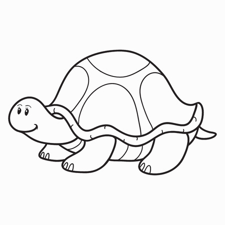 Coloring book (turtle) Illustration