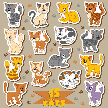 Set of various cute cats, vector stickers Vector