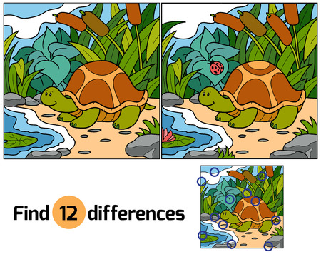 Find differences (turtle)