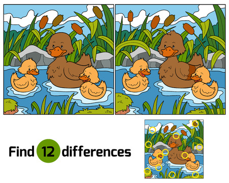 Find differences (duck) Vector