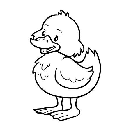 baby duck: Coloring book (duck)