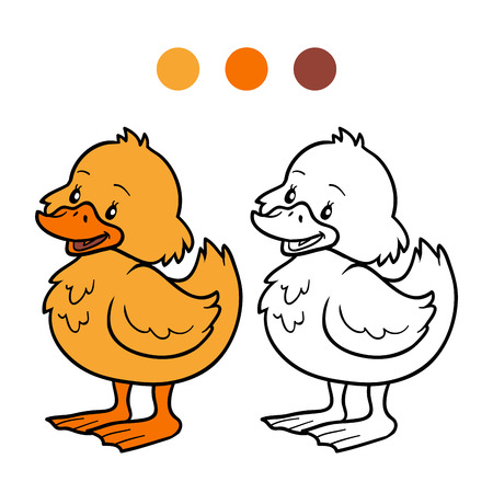duck toy: Coloring book (duck)