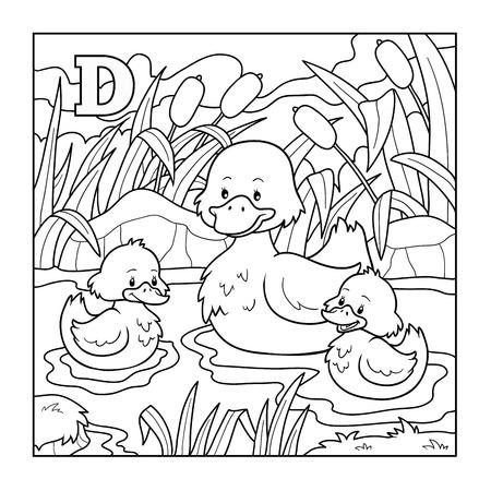 pato caricatura: Libro para colorear (pato), incoloro ilustración (letra D)