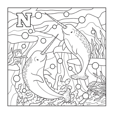 colorless: Coloring book (narwhal), colorless illustration (letter N) Illustration
