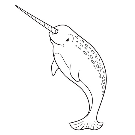 Coloring book (narwhal) Illustration