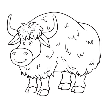 Coloring book (yak) Illustration