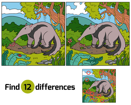 Find differences (anteater) Vector