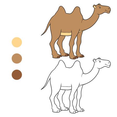 Coloring book (camel) Vector