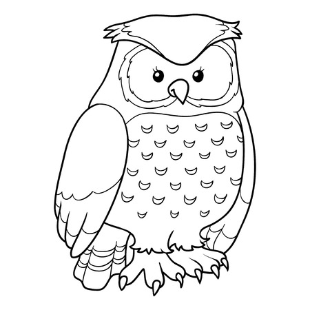 colorless: Coloring book (owl)