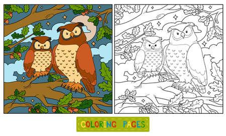 Coloring book (owl) Vector
