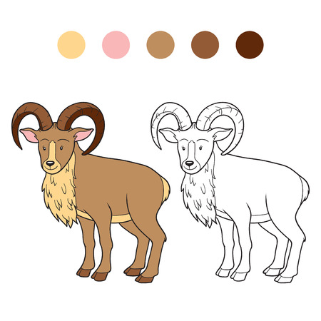 Coloring book (urial) Vector