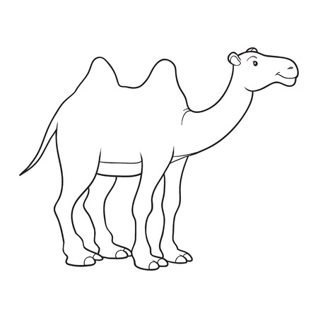 Coloring book (camel)  イラスト・ベクター素材