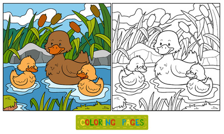 pond water: Coloring book (duck)
