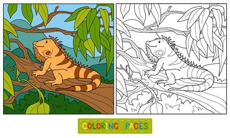 Coloring book (iguana) Vector