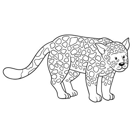 jaguar: Coloring book (jaguar) Illustration