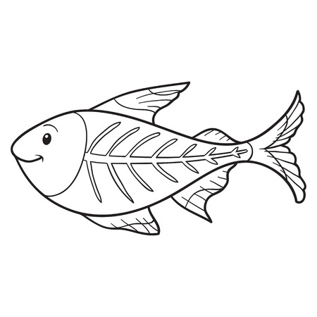 X-ray Tetra Drawings Xray Fish Coloring Book