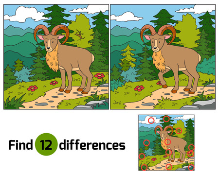 Find differences (Urial, wild sheep) Vector