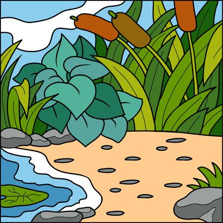 fondo natural: Ilustraci�n del vector, fondo natural (Pond y Playa)