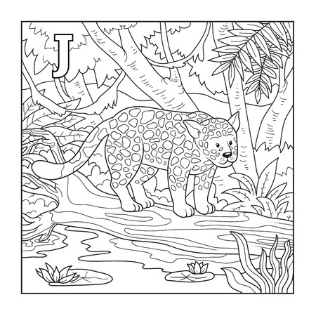 colourless: Libro para colorear (jaguar), incoloro ilustraci�n (letra J) Vectores