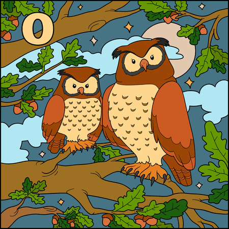 Color alphabet for children: letter O (owl) Vector