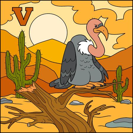 alfabeto con animales: Alfabeto color para los niños: letra V (buitre) Vectores