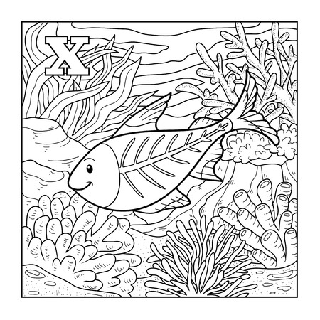 animal outline: Coloring book (x-ray fish), colorless illustration (letter X) Illustration