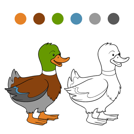 color pages: Coloring book (duck)