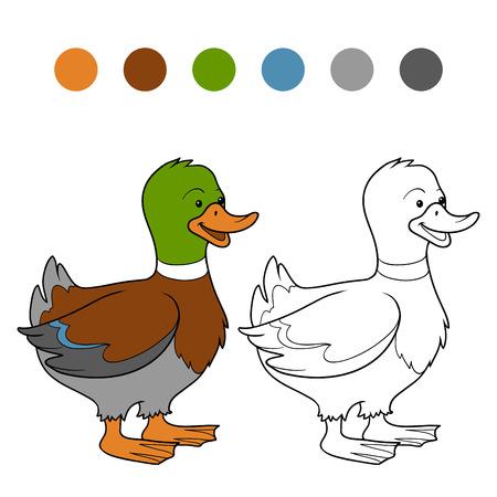 Kleurboek (eend)