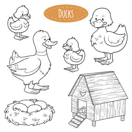 color pages: Set of cute farm animals and objects, vector family ducks