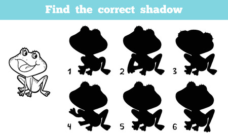 to find: Find the correct shadow (frog)