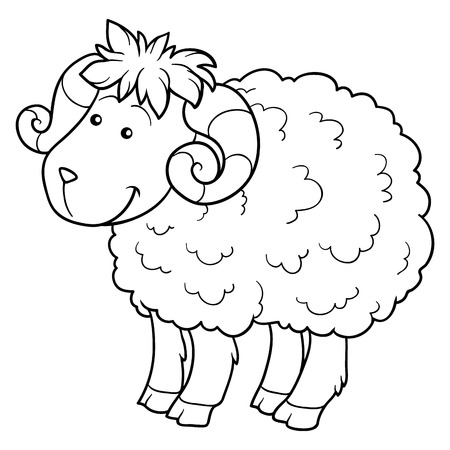 domestic animal: Game for children: Coloring book (sheep)