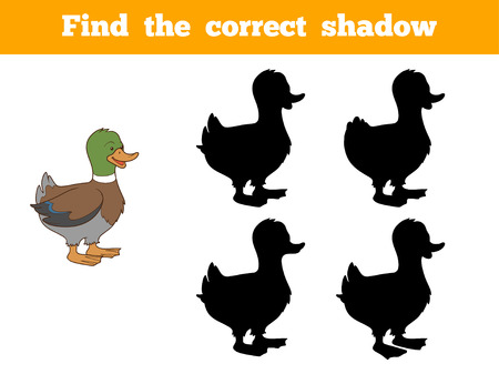 animal farm duck: Game for children: Find the correct shadow (duck)