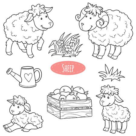 oveja negra: Conjunto de animales y objetos de granja lindo, ovejas de la familia de vectores