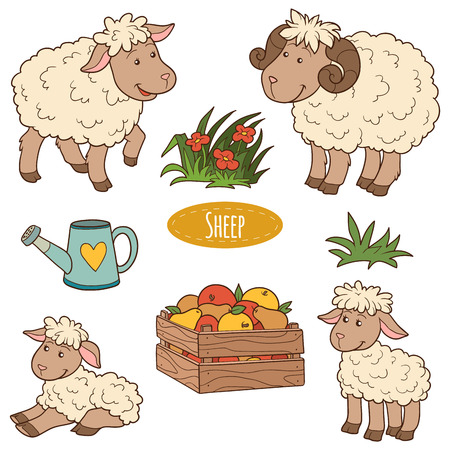 Color set of cute farm animals and objects, vector family sheep Illustration