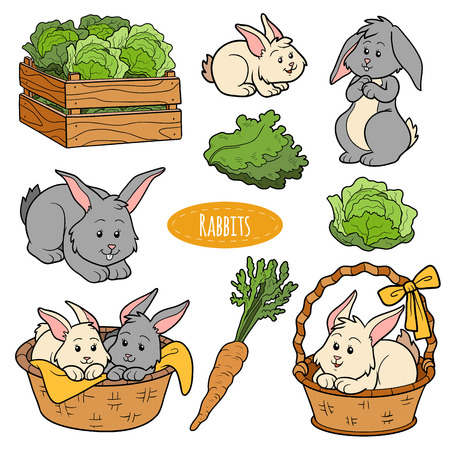 farm animals: Color set of cute farm animals and objects, vector family rabbits