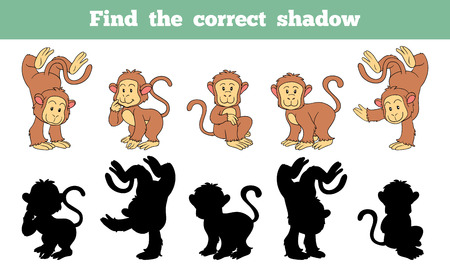 find answers: Game for children: Find the correct shadow (monkey)