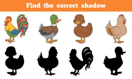 正しい影を見つける: 農場の動物 (鶏とアヒル)  イラスト・ベクター素材