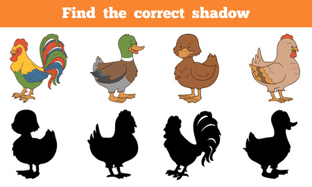 duck silhouette: Find the correct shadow: farm animals (chicken and ducks)